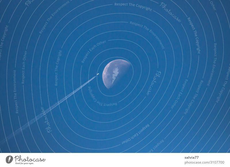 Halbmond Umwelt Luft Himmel nur Himmel Wolkenloser Himmel Mond Klima Klimawandel Wetter Schönes Wetter Diät blau Flugzeug Kondensstreifen