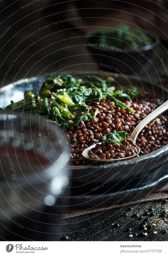 dunkel schwarz Textfreiraum Gemüse Vegetarische Ernährung Teller Vegane Ernährung Löffel Arabien Italienisch Linsen Inder Spinat Entzug Beluga