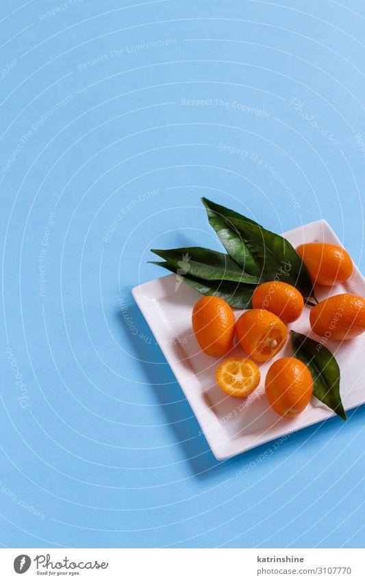 Kumquat-Früchte auf blauem Hintergrund Frucht Ernährung Vegetarische Ernährung Teller exotisch Sommer Blatt frisch saftig Zitrusfrüchte orange tropisch