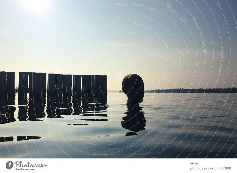 *4.400* Kühler Kopf Wasser Sonne kalt außergewöhnlich Freiheit See Horizont nass Seeufer Wasseroberfläche Holzpfahl Buhne