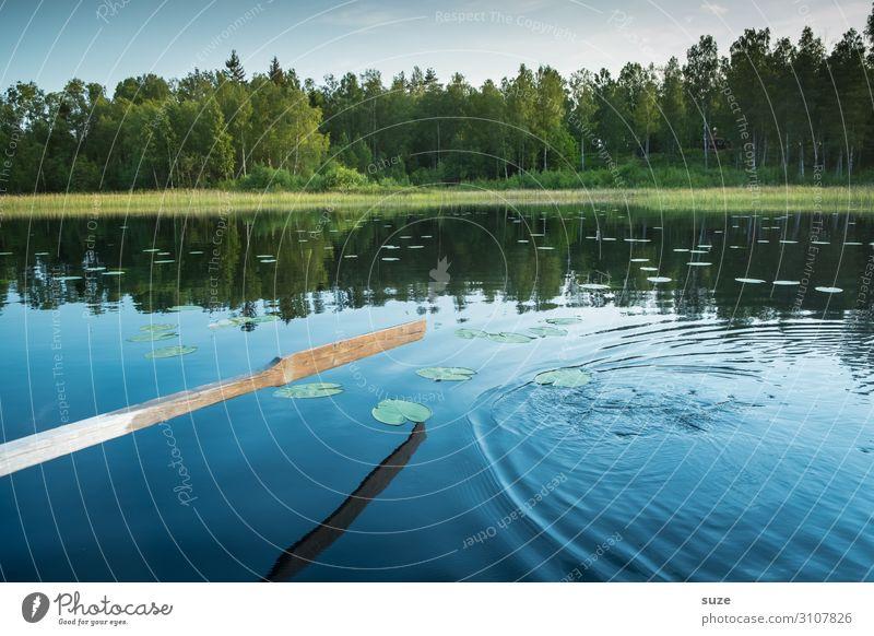 Zu neuen Ufern Ferien & Urlaub & Reisen Natur Sommer Pflanze grün Wasser Landschaft ruhig Wald Gesundheit Umwelt Freiheit See Ausflug Aktion Abenteuer