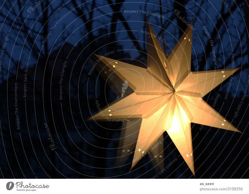 Weihnachtsstern Lifestyle Winter Winterurlaub Dekoration & Verzierung Feste & Feiern Weihnachten & Advent Kultur Fenster Papier Stern (Symbol) glänzend hängen