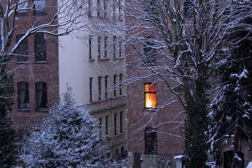 Cocooning Weihnachten & Advent Stadt Farbe Landschaft Baum Haus Einsamkeit Winter Fenster dunkel schwarz Herbst Umwelt Schnee Gefühle Gebäude
