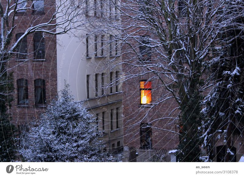 Cocooning Wohnung Haus Lampe Weihnachten & Advent Silvester u. Neujahr Umwelt Landschaft Herbst Winter Wetter Schnee Baum Stadt Gebäude Fassade Fenster leuchten