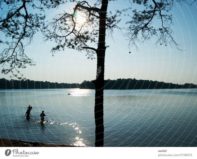 Spaßgesellschaft Freizeit & Hobby Ferien & Urlaub & Reisen Sommer Sommerurlaub Sonne Sonnenbad Schwimmen & Baden Junge Frau Jugendliche Junger Mann 3 Mensch