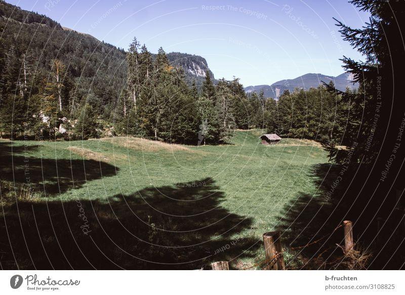 kleine Hütte, Almgebiet Berge u. Gebirge wandern Natur Landschaft Himmel Sommer Herbst Baum Gras Wald Hügel Alpen gehen Ferien & Urlaub & Reisen Österreich
