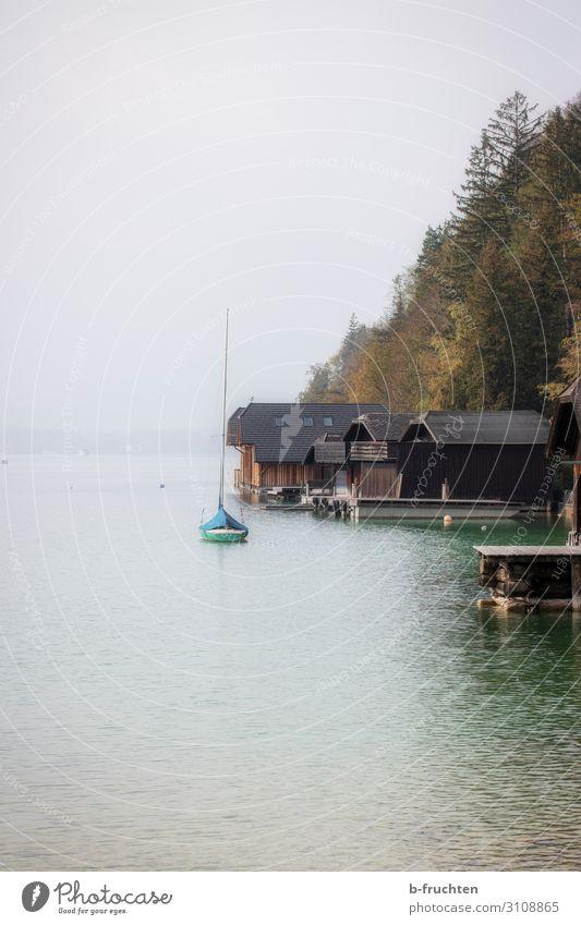 Ruhe am See Herbst schlechtes Wetter Nebel Baum Wald Hütte Einsamkeit Natur Bootshaus Wasserfahrzeug Wolfgangsee ruhig Farbfoto Außenaufnahme Menschenleer Tag