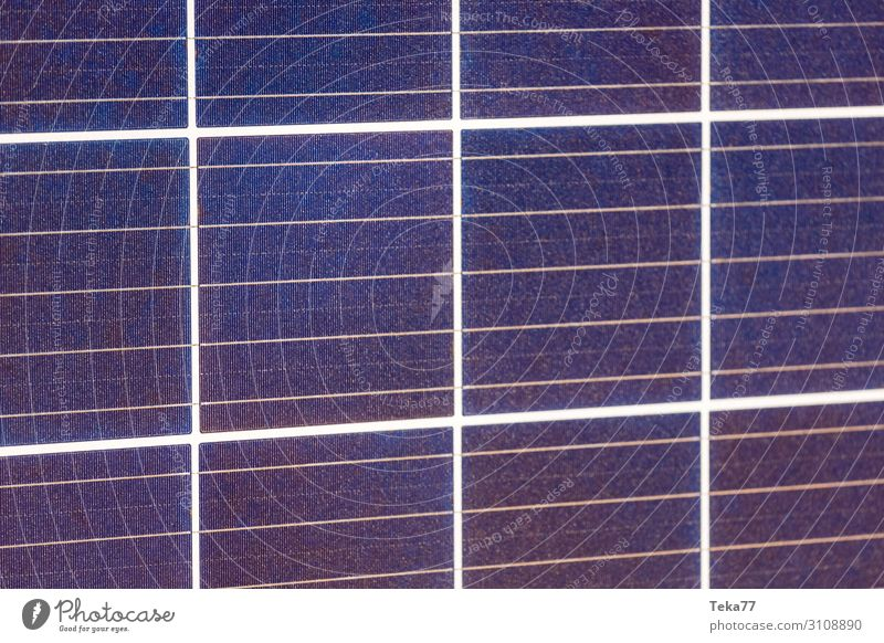 Solarzellen Neu Sommer Technik & Technologie Wissenschaften Fortschritt Zukunft ästhetisch Sonnenenergie Erneuerbare Energie Farbfoto Gedeckte Farben
