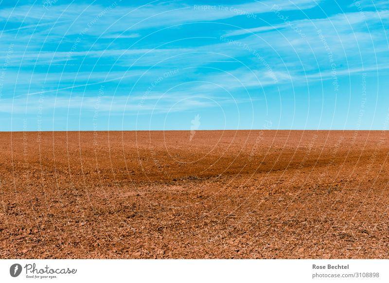 Feldgrenze blau Landschaft Umwelt braun Erde trist Schönes Wetter Unendlichkeit trocken Klimawandel minimalistisch