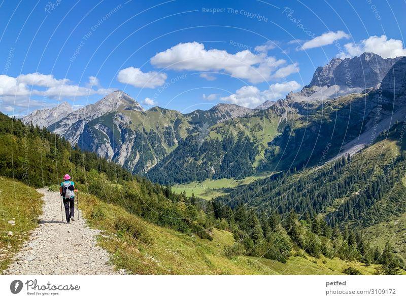 Wanderschaft Berge u. Gebirge wandern 1 Mensch Himmel Wolken Sommer Wald Bewegung gehen Ferien & Urlaub & Reisen frei Unendlichkeit natürlich blau grün Freude