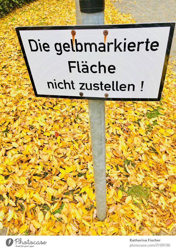 Herbstlaub Natur Klima Blatt Schriftzeichen Hinweisschild Warnschild gelb gold grün schwarz weiß Wege & Pfade Barriere Schilder & Markierungen Herbstfärbung