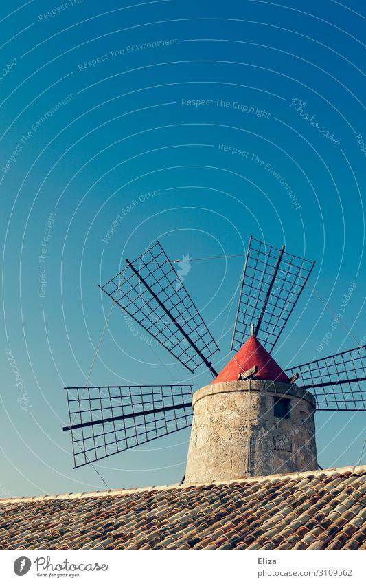 Windmühle blau Blauer Himmel Wolkenloser Himmel Dachziegel Landwirtschaft Sommer ländlich Farbfoto Außenaufnahme Menschenleer Textfreiraum oben Tag