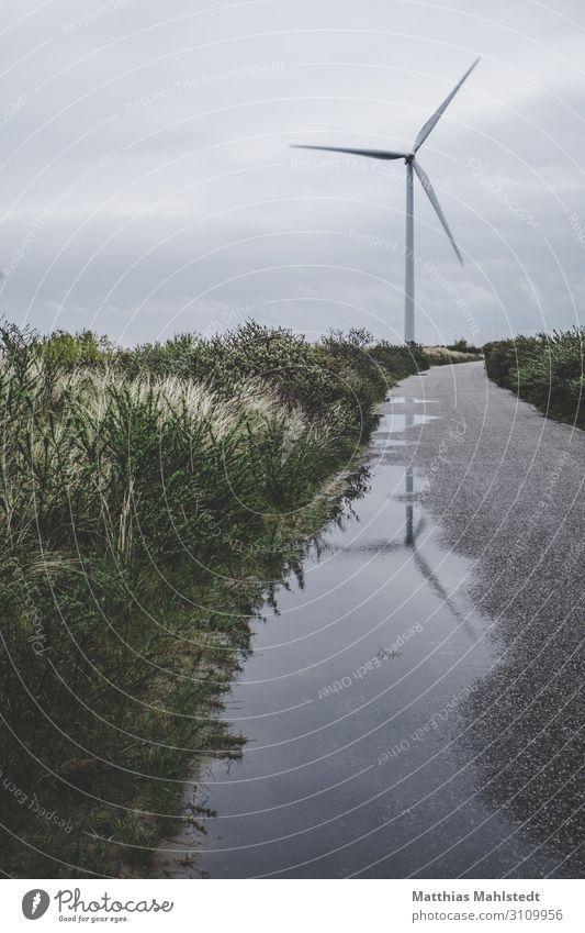 Windrad Technik & Technologie Energiewirtschaft Erneuerbare Energie Windkraftanlage Umwelt Natur Landschaft Sommer Küste drehen nachhaltig natürlich grau grün