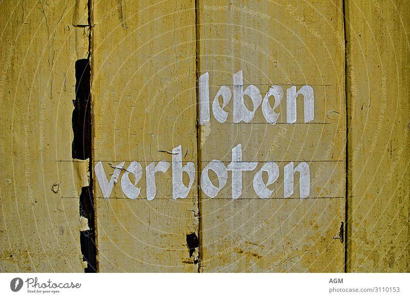 Leben verboten Mauer Wand Holz Schriftzeichen Schilder & Markierungen Hinweisschild Warnschild Graffiti Aggression lustig gelb Gefühle Überraschung Enttäuschung