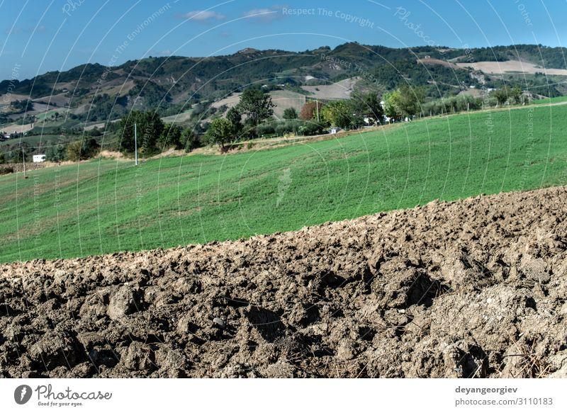 Gepflügte Erde aus nächster Nähe. Sonniger Tag. Umwelt Landschaft Wiese Hügel Fluggerät braun Farbe pflügen Ackerbau Bauernhof gepflügt Pflug Bodenbearbeitung