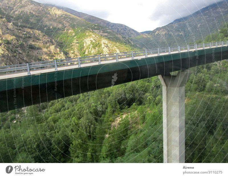 Überbrückung Landschaft Wald Berge u. Gebirge Schlucht Tal Autobahn Brücke Brückenpfeiler fahren Ferien & Urlaub & Reisen groß blau grün türkis Tatkraft