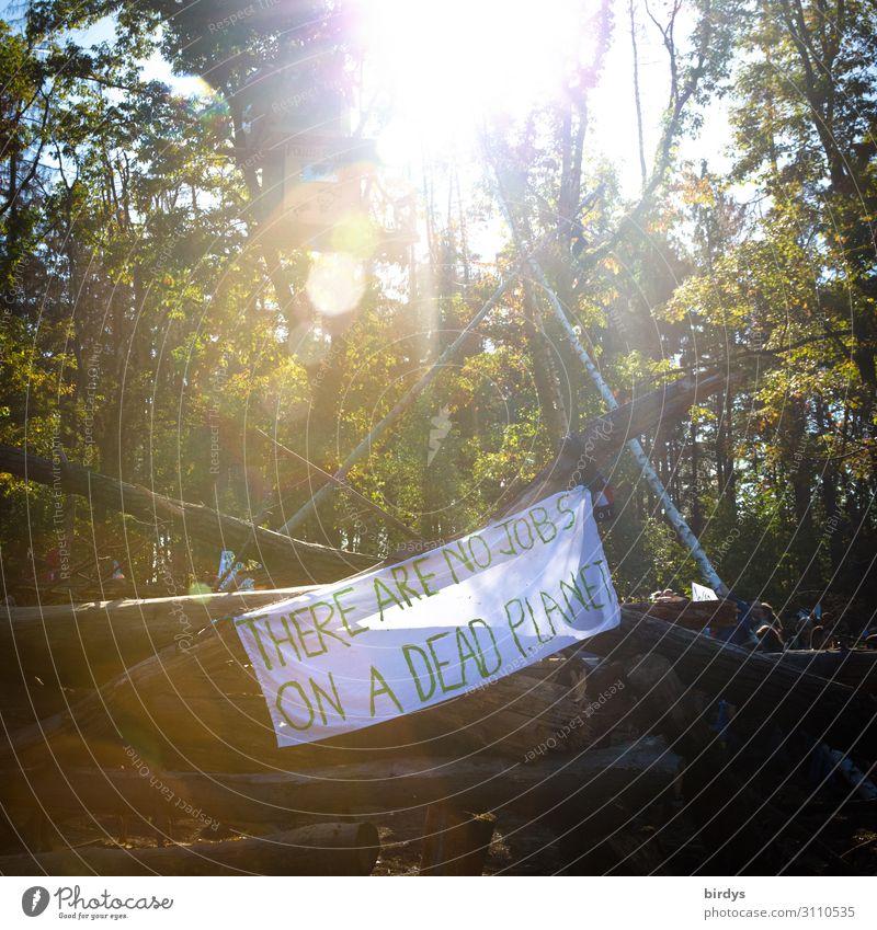Hambacher Forst - Kohle - Klimawandel Baumhaus Natur Sommer Schönes Wetter Wald Schriftzeichen Hinweisschild Warnschild berühren Denken kämpfen authentisch