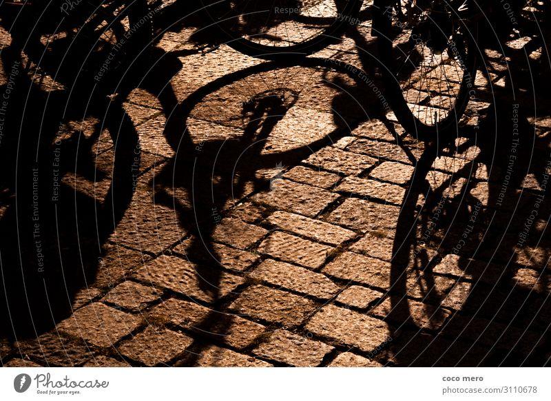 Schattenräder Erholung Bewegung Gesundheitswesen Tourismus Ausflug Fahrrad Fahrradfahren Rad Schattenspiel