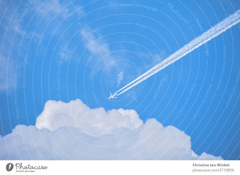 Flugzeug mit Kondensstreifen am blauen Himmel fliegt auf weiße Wolken zu Ferien & Urlaub & Reisen Tourismus Ferne Umwelt Luft Sonnenlicht Schönes Wetter