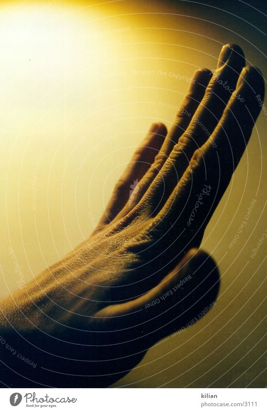 meine Hand Mensch Finger Dynamik