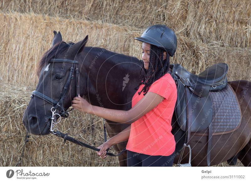 Schöner Teenager mit seinem Pferd lernt reiten. Lifestyle Glück Freizeit & Hobby Ferien & Urlaub & Reisen Sommer Kind Schule Frau Erwachsene Freundschaft