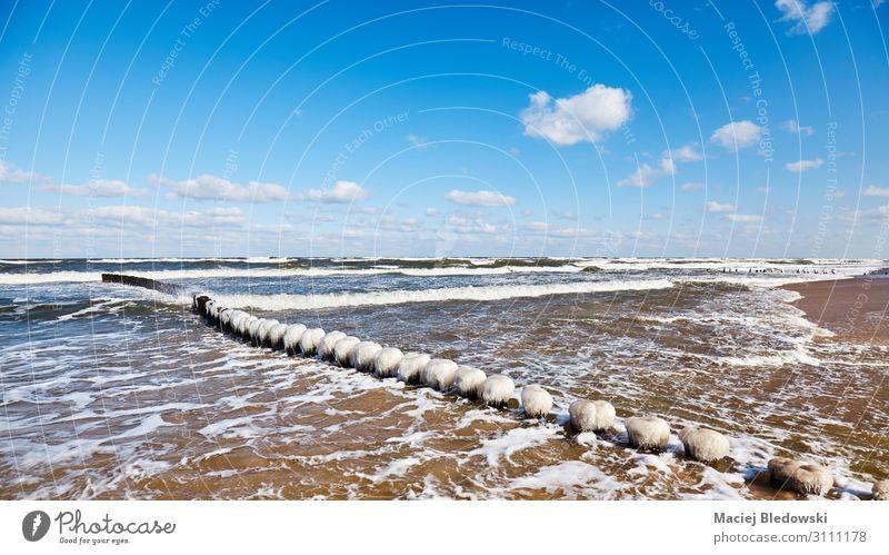 Strand mit einem eisigen hölzernen Wellenbrecher. Ferien & Urlaub & Reisen Ferne Freiheit Meer Winter Natur Landschaft Himmel Horizont Küste Ostsee