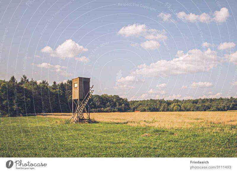 Hochsitz Natur Landschaft Himmel Feld Wald Holz beobachten Jagd eckig hoch Wachsamkeit geduldig Erfolg erleben Perspektive Farbfoto mehrfarbig Außenaufnahme Tag