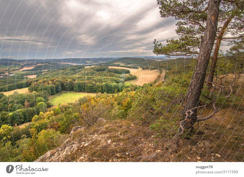 Hörselberg 3 Freizeit & Hobby Ferien & Urlaub & Reisen Tourismus Ausflug Sommer Berge u. Gebirge wandern Thüringen Umwelt Natur Landschaft Pflanze Erde Himmel