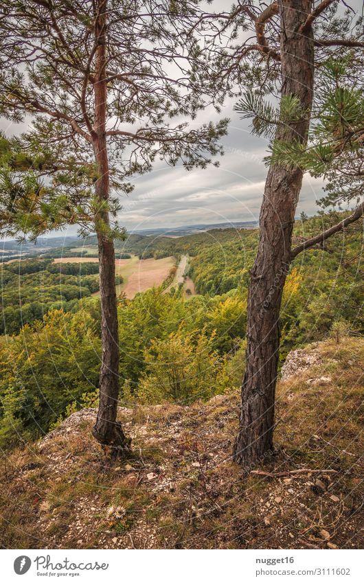 Hörselberg 2 Ferien & Urlaub & Reisen Natur Sommer Pflanze grün Landschaft Baum Wolken Wald Berge u. Gebirge Herbst gelb Umwelt Frühling Gras Tourismus