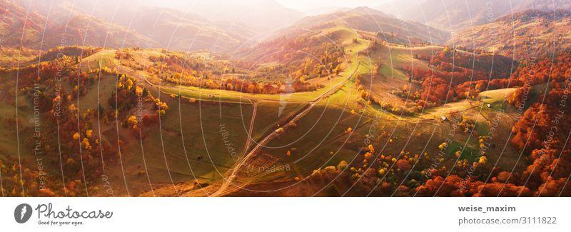 Herbstliches Bergpanorama. Sonnige Wiese und bunter Wald Ferien & Urlaub & Reisen Ausflug Abenteuer Berge u. Gebirge Umwelt Natur Landschaft Erde Sonnenaufgang