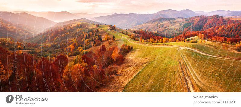 Ferien & Urlaub & Reisen Natur Farbe schön Landschaft rot Baum Wald Ferne Berge u. Gebirge Herbst gelb Umwelt natürlich Wege & Pfade Wiese