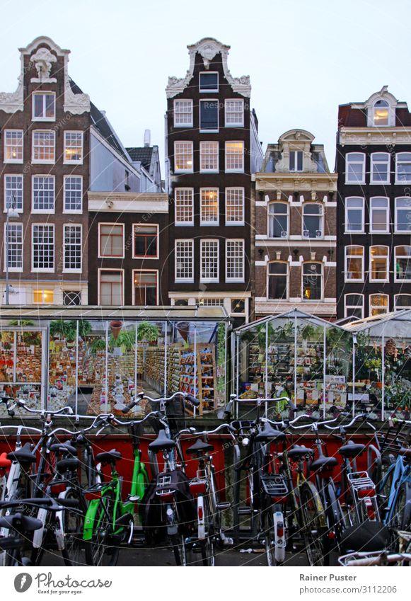 Eine Reihe Fahrräder, dahinter Gewächshäuser, dahinter die typischen schmalen Gebäude von der Innenstadt von Amsterdam Sightseeing Städtereise Niederlande