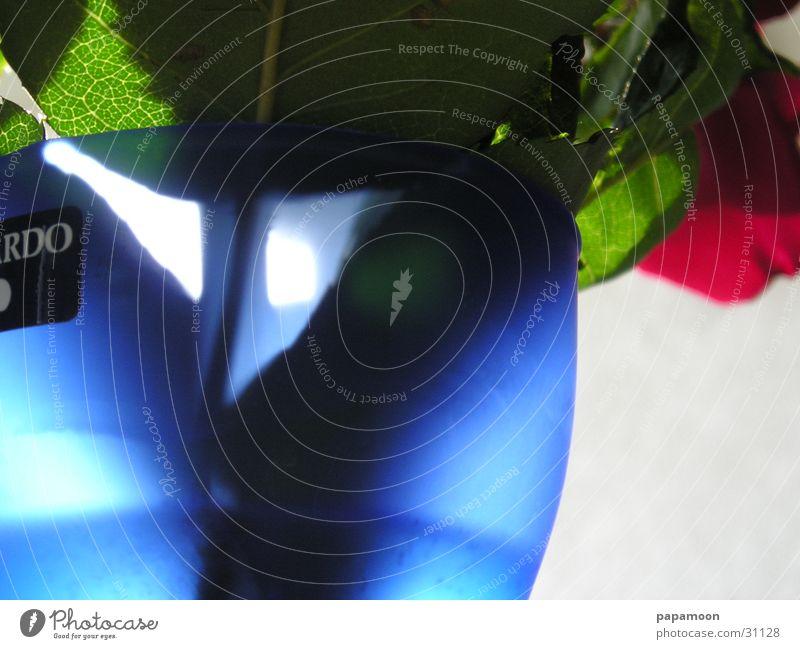 blue shadow 2 Vase Blume Blumenvase Licht Gegenlicht Rose Häusliches Leben blau Schatten Wasser