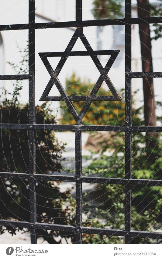 Zaun mit einem Davidstern, Symbol des Judentums, vor einer Synagoge Religion Eisen Garten Religion & Glaube Israel