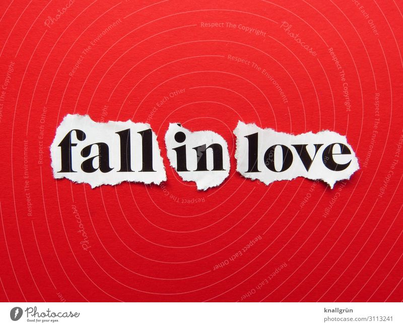 fall in love Schriftzeichen Schilder & Markierungen Kommunizieren Liebe grau rot weiß Gefühle Glück Lebensfreude Sympathie Zusammensein Verliebtheit Begierde