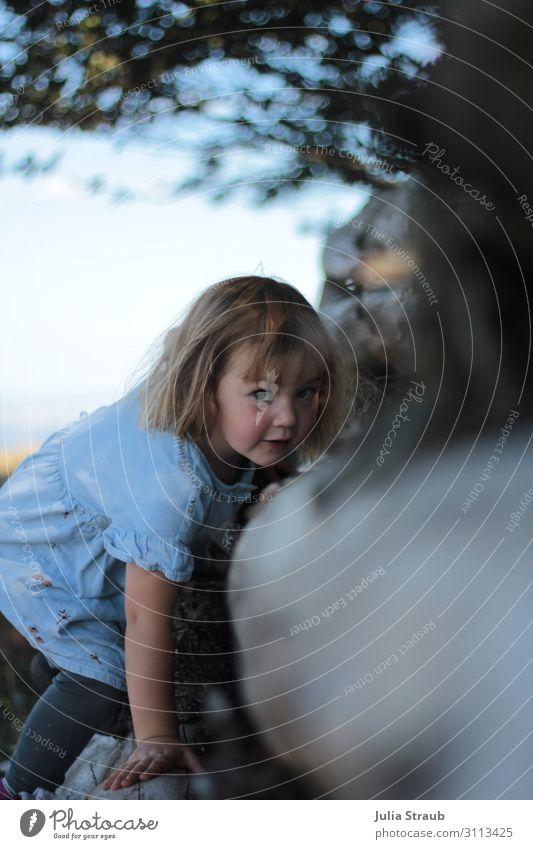 Baumstamm klettern Kind Mensch Natur Sommer Blatt Wald feminin blond Kindheit Schönes Wetter beobachten entdecken Kleid Klettern brünett