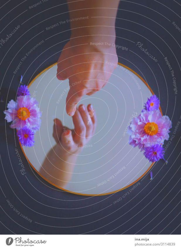 Verborgene Welt Dekoration & Verzierung Spiegel Hand Kunst Theaterschauspiel berühren fantastisch Neugier Sympathie Freundschaft Einsamkeit geheimnisvoll Glaube