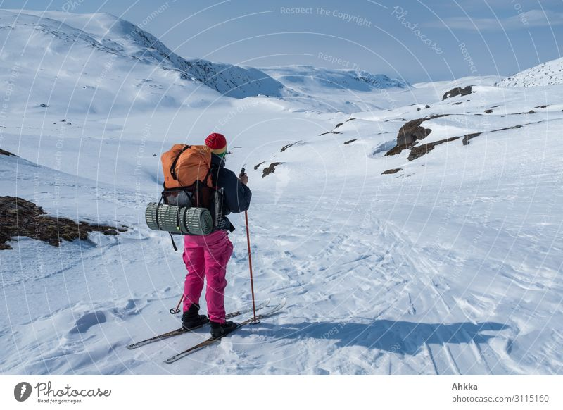 Ferne Ziele, Abenteurerin schaut in weite Bergwelt Abenteuer Winter Schnee Winterurlaub Wintersport Junge Frau Jugendliche Natur Urelemente Eis Frost