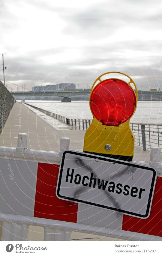 Klimawandel: Hochwasser in Köln Umwelt Natur Wasser schlechtes Wetter Flussufer Rhein Stadtzentrum Umweltverschmutzung Umweltschutz Zerstörung überschwemmen