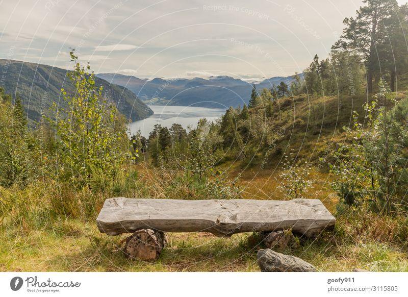 Ausicht auf Norwegens Nordfjord Himmel Ferien & Urlaub & Reisen Natur schön Wasser Landschaft Wolken Einsamkeit ruhig Ferne Berge u. Gebirge Tourismus Freiheit