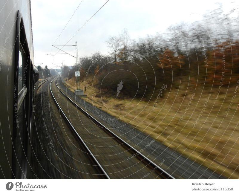 Zugfahrt Ausflug Natur Landschaft Sträucher Feld Menschenleer Verkehr Verkehrsmittel Verkehrswege Personenverkehr Öffentlicher Personennahverkehr Bahnfahren