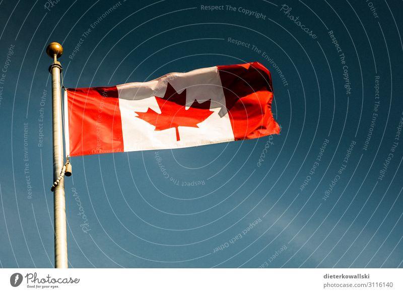 Fahne Stolz Kanada Fahnenmast Ahorn Patriotismus Identität identifizieren Farbfoto Außenaufnahme Menschenleer Tag