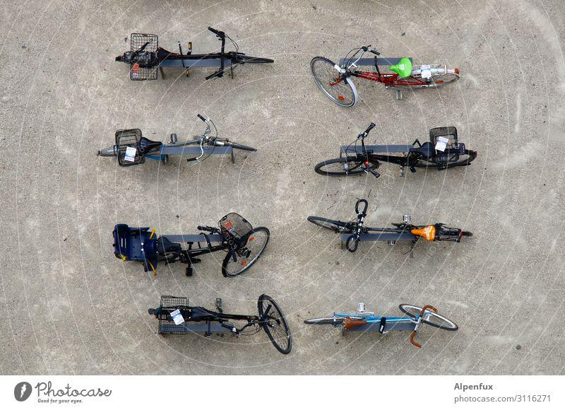 Parkraumüberwachung Verkehr Verkehrsmittel Personenverkehr Fahrradfahren ästhetisch Zufriedenheit Gesellschaft (Soziologie) gleich Klima Konkurrenz Mobilität
