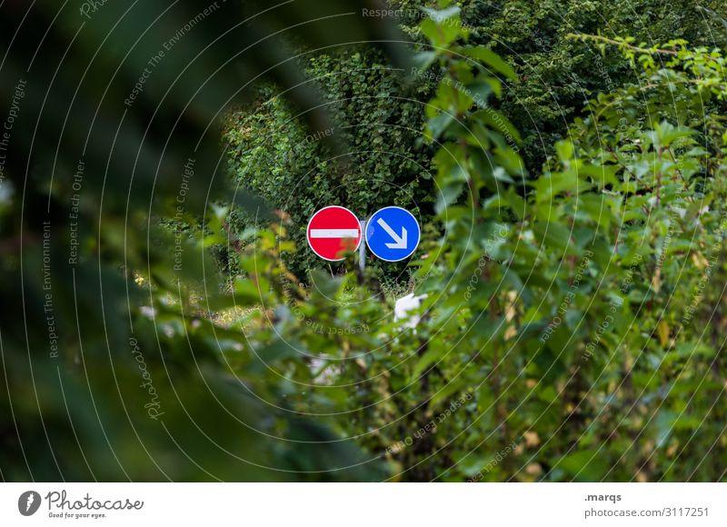 Ausweg Blätter Natur Straße Verkehrszeichen StVO Straßenverkehr Verkehrsschild Pfeil Verbote Gegenteil Einfahrt verboten Wegweiser Orientierung Navigation
