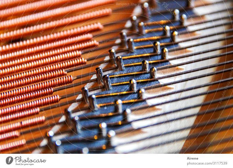 Fingerspitzengefühl für die richtigen Töne Instrumentenbau Musik Konzert Bühne Klavier Flügel Saite Metallfeder Stahlkabel Linie parallel ästhetisch authentisch