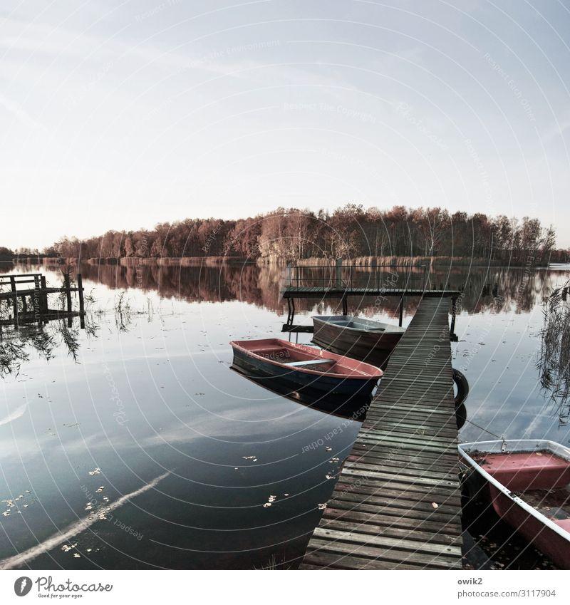 Still Umwelt Natur Landschaft Wasser Himmel Horizont Herbst Schönes Wetter Baum Wald Seeufer Ruderboot Steg Anlegestelle Holz Idylle Ferne Windstille friedlich
