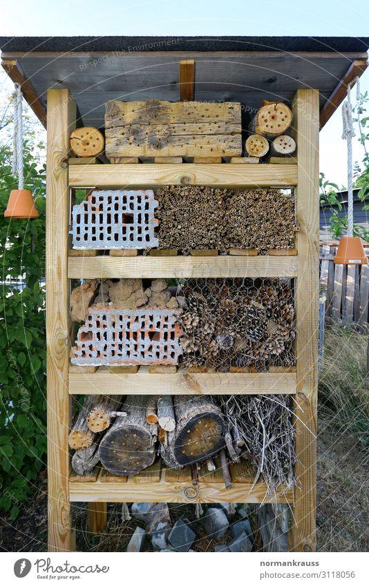 Insektenhotel Natur Holz Umwelt natürlich Stein braun Häusliches Leben Backstein Umweltschutz nachhaltig ökologisch Tierschutz