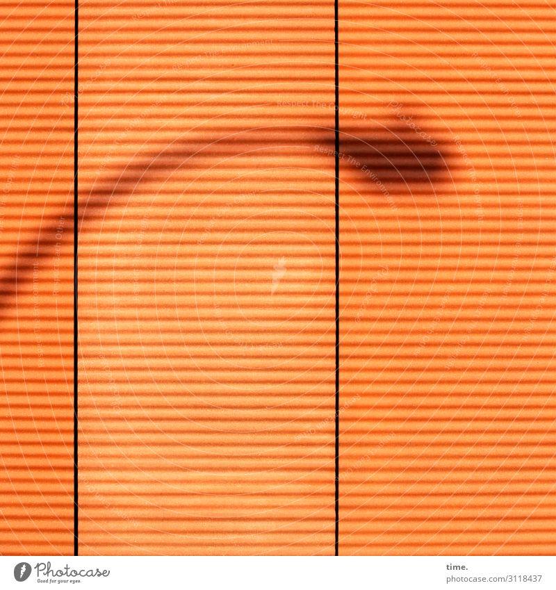 Lampe, Möwe, Fassade, unscharf Energiewirtschaft Mauer Wand Straßenbeleuchtung Laterne Linie Streifen einfach orange Leben Überraschung Einsamkeit Idee