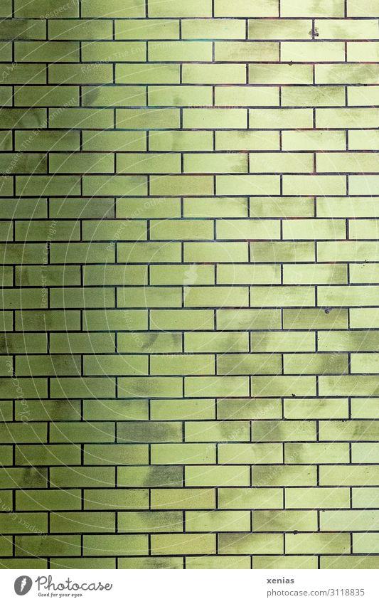 Grüne Wand Stadt Bahnhof Mauer Tunnel U-Bahn Stein Linie grün Hintergrundbild Rechteck Fliesen u. Kacheln Farbfoto Außenaufnahme Muster Strukturen & Formen