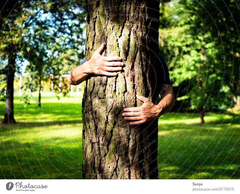 Mann umarmt einen Baum in einem Park Lifestyle maskulin Erwachsene Leben Hand Finger 1 Mensch 45-60 Jahre Umwelt Natur Sommer Herbst Klimawandel Gras Wald